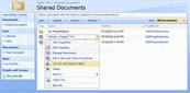 Captura de tela deAspose.Slides for SharePoint