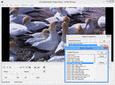 Screenshot ofLEADTOOLS Multimedia Suite SDK