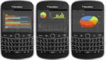 Screenshot ofTeeChart Java for BlackBerry